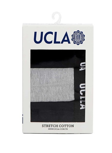 UCLA Boxer Renkli